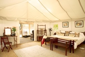 The tents are furnished with